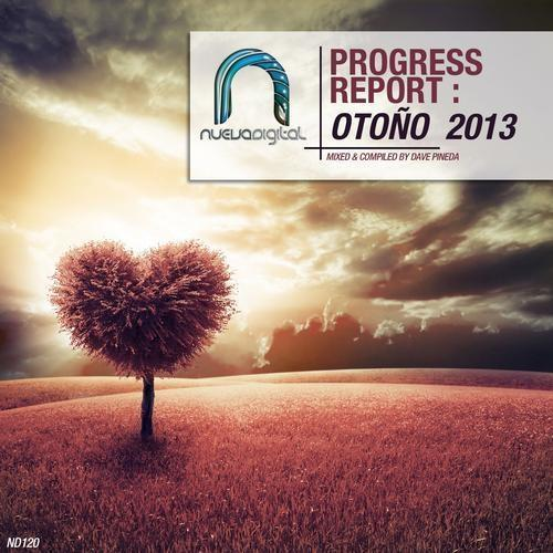 Progress Report: Otono 2013 (2013)