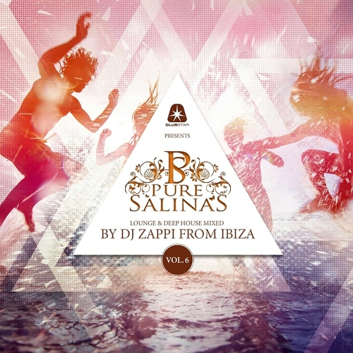 Pure Salinas Vol 6 (Compiled By DJ Zappi) (2015)
