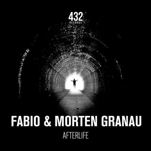 DJ Fabio & Morten Granau - Afterlife (2016)